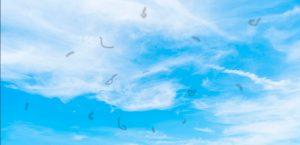 Moscas Volantes: O que causam e quais são os tratamentos indicados